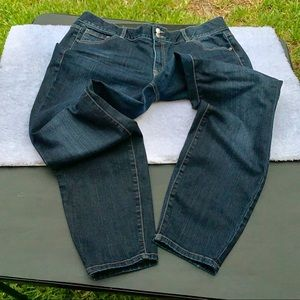 Lane Bryant Skinny(Plus Size) Jeans